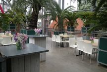 Verhuur / Venue hire / In de Hortus botanicus Leiden zijn verschillende ruimtes te huur: de Tuinkamer met het aangrenzende cycasterras, het tropische terras in de Tropische kassen en de monumentale Oranjerie.