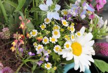BOTANIK SUMMER / Lust auf sommerliche Leichtigkeit und ein vitales Lebensgefühl? Mit Botanik Summer verwandelt ihr euer Zuhause in ein grüne Wohlfühloase! Alle Produkte sowie weitere Inspiration findet ihr unter https://www.xxxlutz.de/c/shop-the-look-botanik-summer ☼