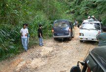 Bokor road / Route du Bokor / Les 30 km de la route pour le Bokor ont été entièrement refaits en 2012. Dans les années 1960, un sens montant était organisé le matin, un sens descendant l'après-midi.