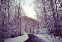 Where I live  / Photos taken on and around the mountain I live on in Western North Carolina, USA