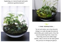 cudowne mini ogródki
