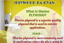 buy plywood online