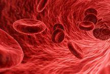 Tipo d sangue