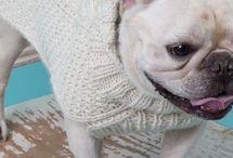 Extra small dog knitting patterns