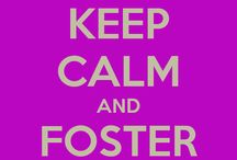 Animals Needing Foster / You don't need to adopt to save a life; foster today.