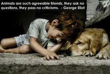 Dog Quotes / Dog Quotes :) / by Anton Krasinski