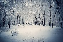 WINTER WONDERLAND / pictures set in snow in any environment