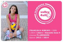 Flamingos / Volley4All class of 15 year old girls - The Flamingos