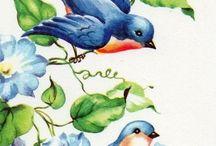 чудо птички