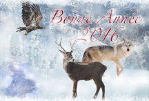 Noël / Fêtes de fin d'année