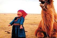 ラクダと共に訪れし我