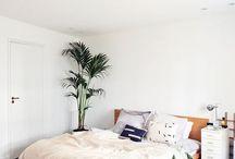 Living - Bedroom