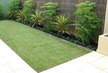 Garden and Outdoor