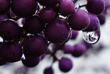 purple - mauve / by Stephanie Therien