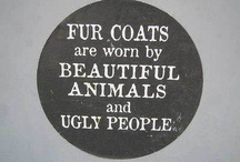Animal cruelty + Adopt an Animal / It would be great if you could repin these so we can spread the message. If you live near a shelter why not pay a visit to see if you can change the world!