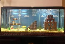 Fish tanks / by Connie woodrow