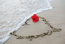 A Valentine Story / by Lygea Robbins