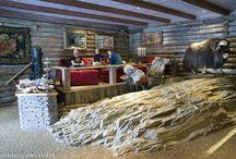 Villreinen Cafè & Bar / En hyggelig cafè inne på hotellet. Varme og kalde retter, alle rettigheter.