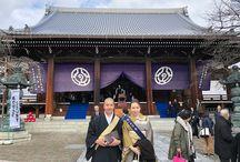 Neko—Temple Life
