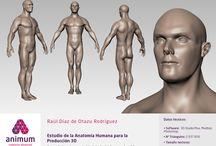 Portfolio Animum 3d modulo 1