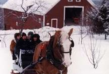 sleigh rides / by Marsha Rainey