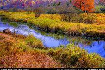 Fall Foliage Scenery