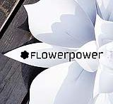 Flowerpower / Flowerpower to papierowe instalacje florystyczne. Powstały z połączenia pasji do kwiatów, dekoru i architektury. Każdy 'flower power' to ręcznie robione arcydzieło, jedyne i niepowtarzalne.