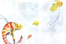 Disegni Chiara Pasqualotto