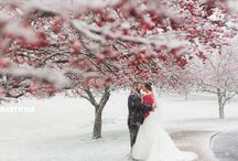 Toledo Ohio Winter Wedding by Mary Wyar Photography / by Mary Wyar Photography Our favourite images from the wedding that happened on the first snow of winter! http://marywyarphotography.com