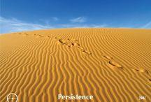 56. Persistence