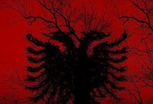 •albania