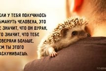 Quotes (in russian)