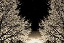 Moon Magic