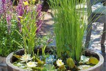 Tolle Ideen für den Garten / Alles, was ungewöhnlich ist und richtig gut aussieht!