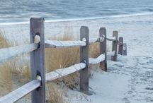 La plage ou bord de mer