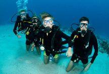 Diving best places