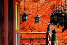 Japán ősz