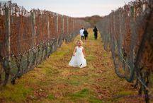 Raphael Vineyard Weddings / Weddings held at Raphael Vineyard photographed by Sherry Pickerell Photography