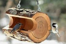 birdfeeders, insects hotels