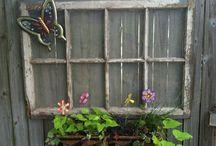 Fence Beauty / by Julia Grindstaff