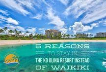 Hawaii Travel & Vacation Rentals