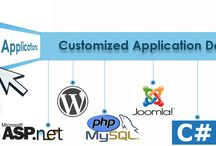 website development company in usa / techno softwareas is a customized software development company with 12 years'experience,300 experts and operations in Texas, USA and india.www.technosoftwares.com
