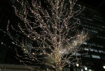 2016年名古屋駅イルミネーション