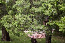 seasonal · spring · summer / the warmer seasons · nature · spring blossoms · picnics