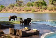 Away in Zambia