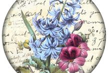 Kwiaty w kole