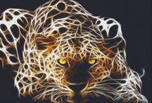 Cross stitch ~ Wildlife (both tiny and big creatures)
