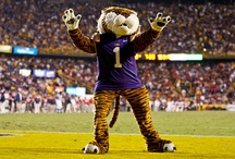 LSU / by Liz Webre