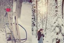 winter wonderland / by Penny Tucker