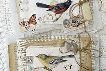scrap oiseaux